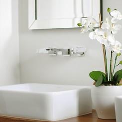 10 loại cây nên trồng trong phòng vệ sinh giúp khử mùi hiệu quả.